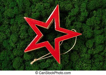 Christmas red star on dark green moss background