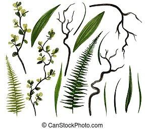 Dark green watercolor greenery collection, hand drawn vector