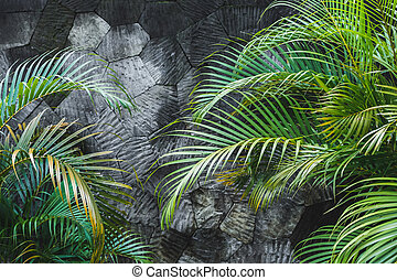 Dark grey concrete stone wall background with green tropical palm leaves