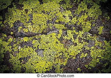 Dark Grungy Rock Background Texture Pattern