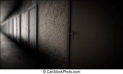 Dark hallway with doors. The terrible corridor.