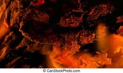 Dark live coals. Burning hardwood in detail. Burning woods...