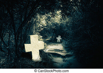 Dark night in mysterious forest with abandoned graves