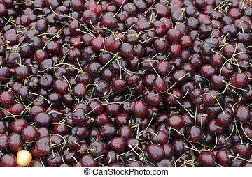 Dark Red Cherries For Sale