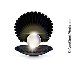dark shell and white pearl - white background and the large ...