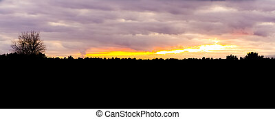 dark silhouette of a heather forest landscape during the sunset, colorful sky and clouds