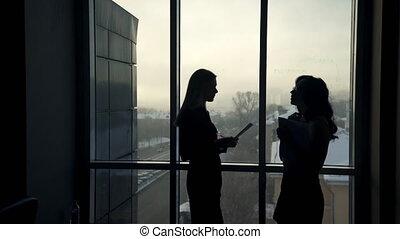 dark silhouettes of two women against window inside office
