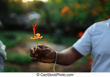 Dark-skinned man holds a beautiful flower in his hand