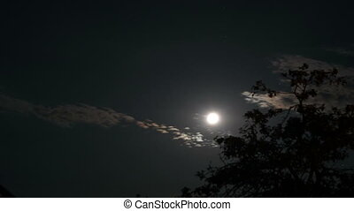 dark sky with rising moon time lapse video