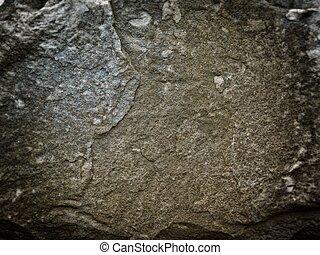 Dark Stone Texture In The Garden