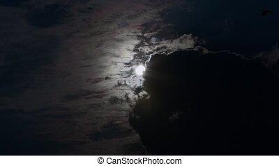 Dark Stormy Sky with Grey Clouds - A dark stormy sky...