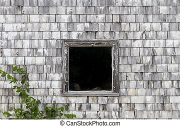 Dark Window in Old Shed