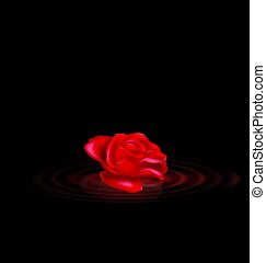 darkness and the abstract red rose with black waves