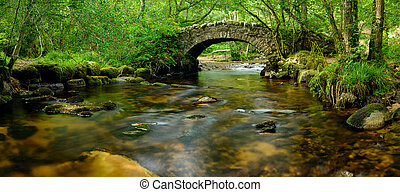 An ancient stone packhorse bridge crossing the River Bovey in Hisley Woods in east Dartmoor