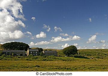 Dartmoor, Devon, England, Cornwall, Europe