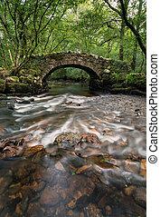 dartmoor, puente