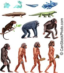 Darwin Evolution Icon Set - Colored and isolated darwin...