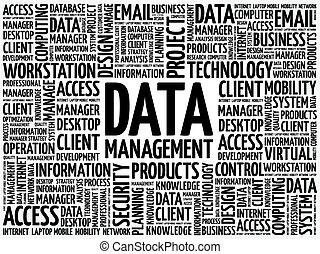 Data Management word cloud