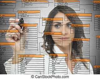 Database software development - Businesswoman works on the...