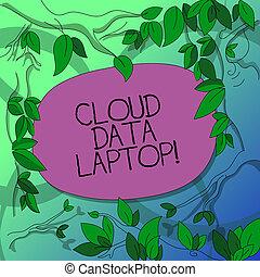 datacenter, baum, begriff, zweige, farbe, text, blätter, internet, zerstreut, laptop., space., server, umgeben, bedeutung, voll, verbunden, leer, handschrift, schreibende, daten, wolke