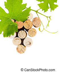 Dated wine bottle corks isolated on the white