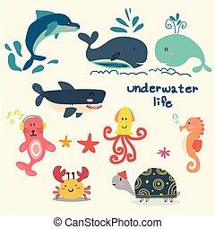 dauphin, plat, ensemble, seahorse, mer, sous, etoile mer, cachet, vie, vecteur, poulpe, animal, baleine, tortue, requin, dessin animé, crabe