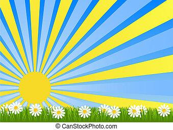 dawn - Dawn Flower Fields flooded with sunlight vector...