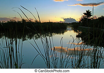 Dawn in Everglades National Park