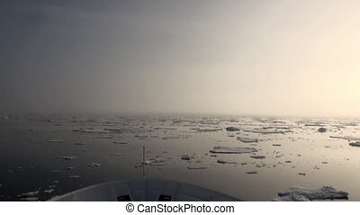 Dawn in ocean among icebergs and ice in Arctic.