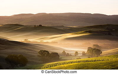 Dawn in Tuscany, Val d'Orcia, Italy