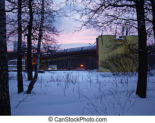 dawn in winter in the Park