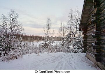 Dawn in winter