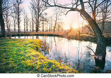 Dawn on the river with grass on shore