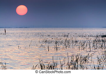 Dawn on tropical lake