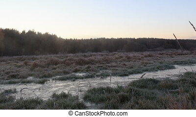 Dawn over the frozen swamp. Zoom. Time Lapse