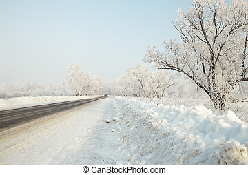 Car on a winter road in the woods leaving afar