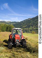 day., ensoleillé, automne, champ, labourer, tracteur