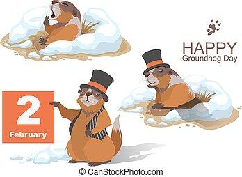 day., marmota, conjunto, marmota, feliz