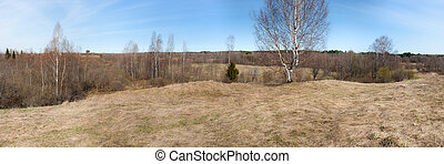 rural landscape in early spring