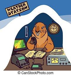 day., vecteur, marmotte amérique, illustration, heureux