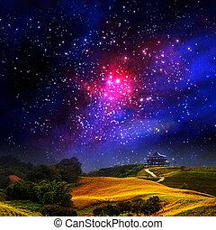 daylily, fleur, galaxie