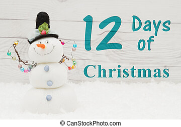 Days of Christmas message, Some snow and a snowman on...