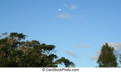 Daytime Moon Timelapse - Time lapse of the moon disappearing...