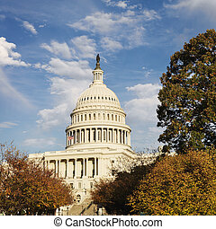 dc., 워싱톤 미 국회의사당, 건물