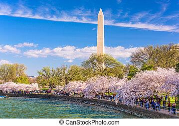 DC in Spring