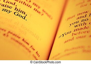 de, bijbel, pagina's