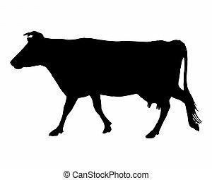 de, black , silhouette, van, een, koe, op wit