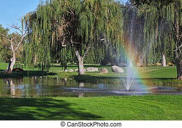 de, bomen, en, het glanzen, regenboog