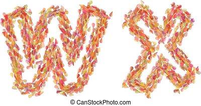 de, brieven, w, x, gemaakt, van, autumn leaves