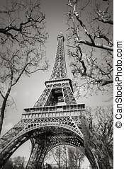 de, champs, eiffel, 巴黎, 树, 法国, 火星, 塔